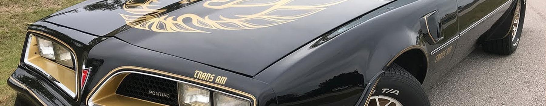 Shop OEM Pontiac Touch Up Paint